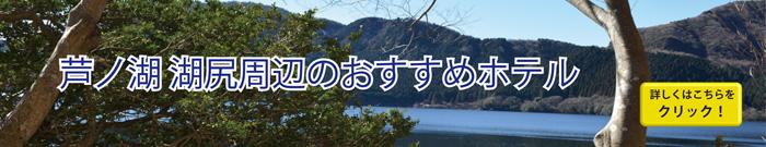 芦ノ湖スカイライン周辺のおすすめホテル
